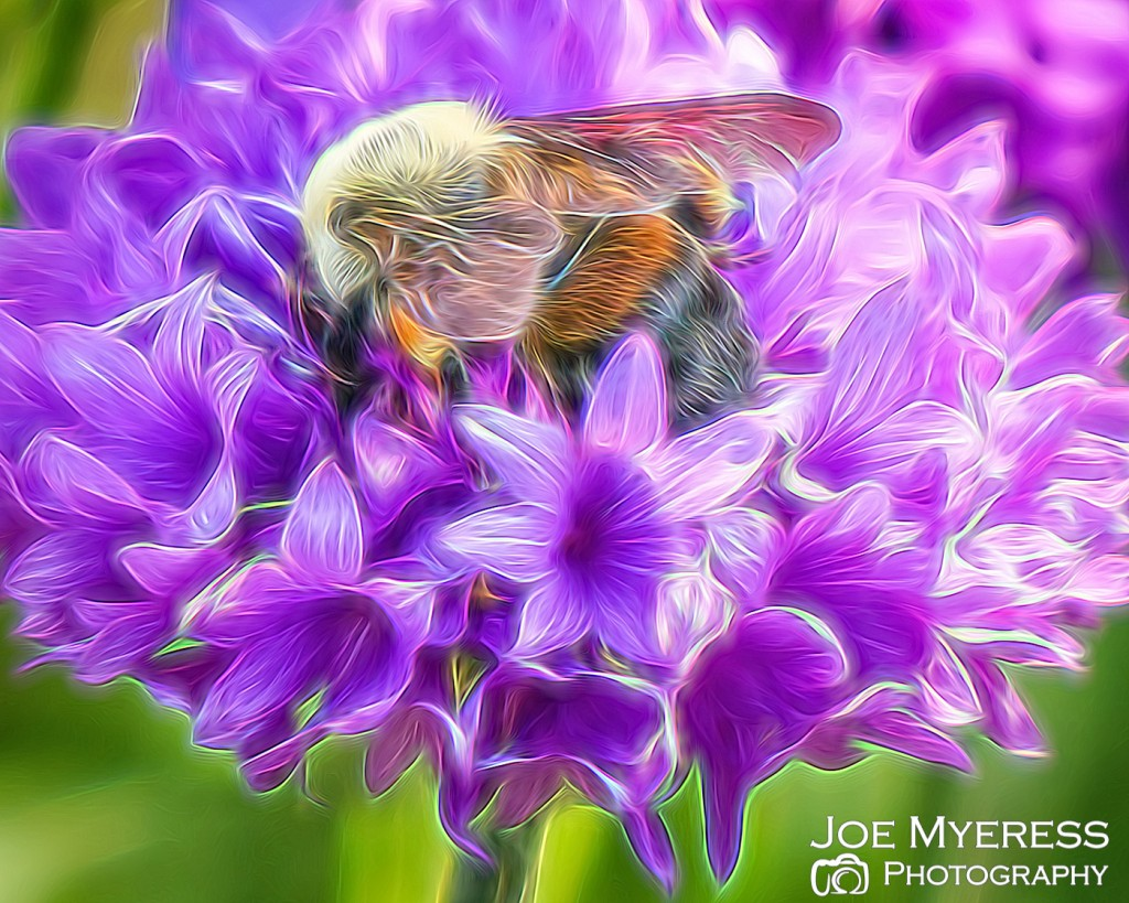 flower bee painted-3